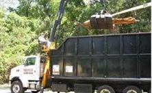 Cricket's Tree Service, Inc.