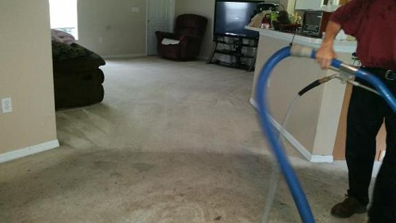 Superior Carpet & Upholstery Cleaning Inc