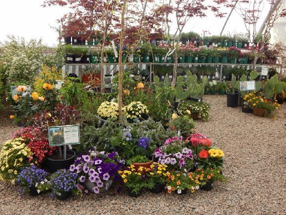 Earthworks Garden Supply In Chino Valley Az 86323