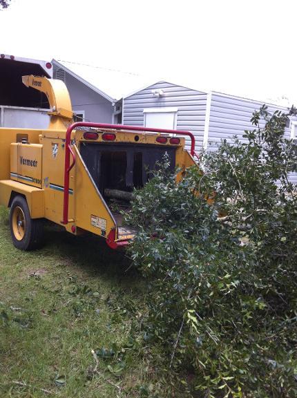 Tom's Tree Service