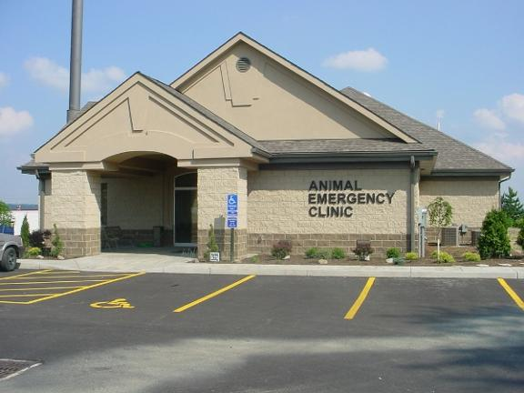 After Hours Animal Emergency Clinic
